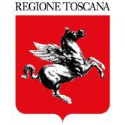 Acquisti Verdi, contributi per i Comuni toscani - AcquistiVerdi.it