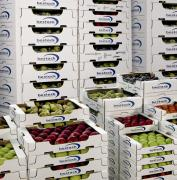 Contributi Ue per chi usa imballaggi in cartone ondulato certificati - AcquistiVerdi.it