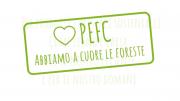 Novità dal PEFC: quale futuro per le foreste? - AcquistiVerdi.it