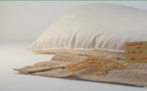 La pula di canapa bio in un cuscino per combattere i dolori reumatici - AcquistiVerdi.it