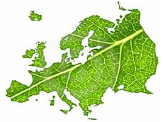 SCORE contro l'illegalità nel settore foresta-legno  - AcquistiVerdi.it