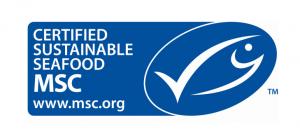 Pesca sostenibile, in Emilia-Romagna 7 aziende certificate MSC - AcquistiVerdi.it